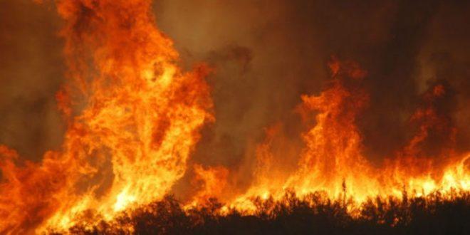incendio alla Solfatara