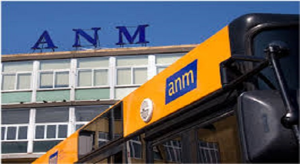 anm linea 3M