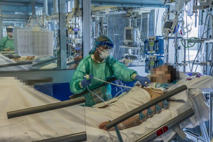 covid19 CAMPANIA ragazzo 19 anni intubato